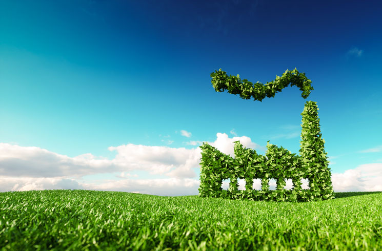 How Businesses Can Reduce Their Carbon Footprint